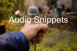 audio snippets